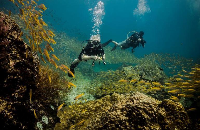 Tailand/Diving/10.jpeg