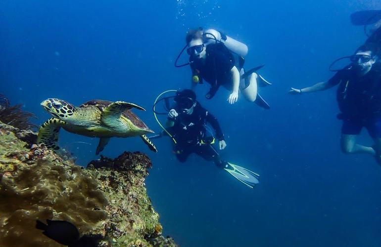 Tailand/Diving/4.jpeg