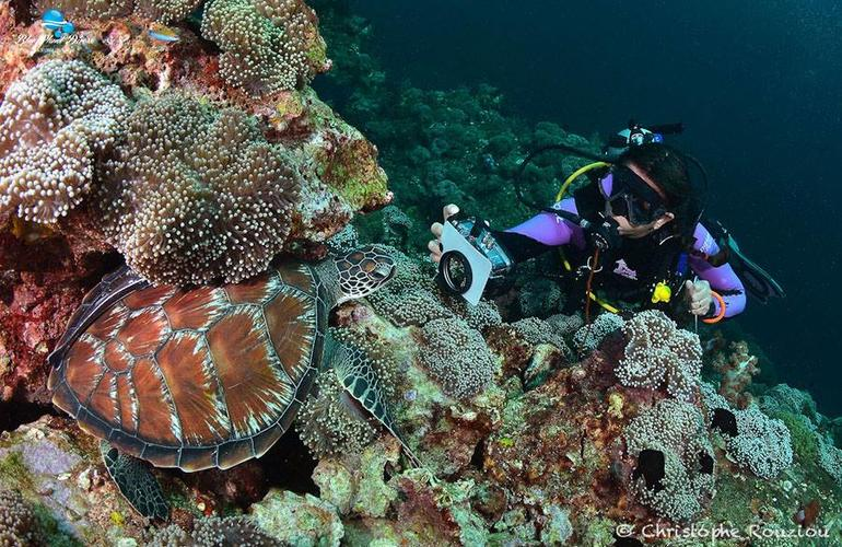 Tailand/Diving/6.jpeg