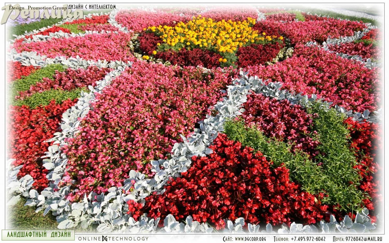 Ольга серпухов цветы